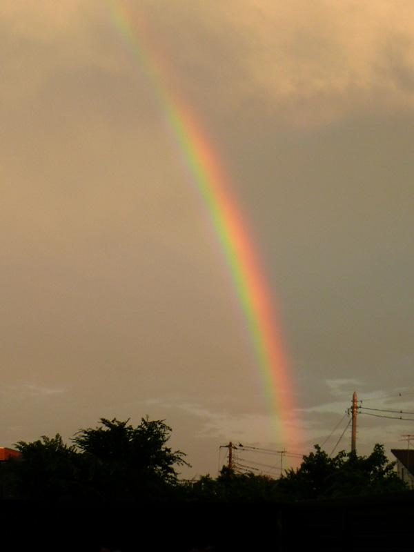 虹がでた~♪