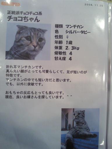 NEC_0415.jpg