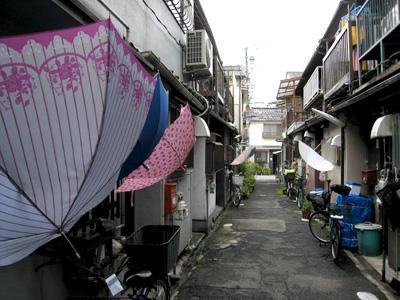 梅雨傘01