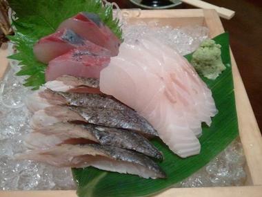 ハマチ イサキ だるま鯛