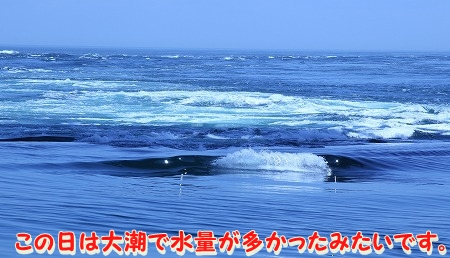 徳島に行ってきました~♪ (15)