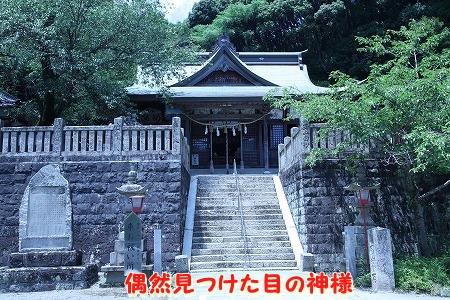 徳島に行ってきました~♪ (11)