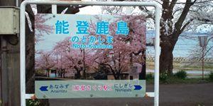 sakura10_R.jpg