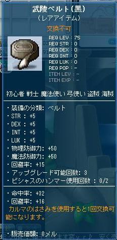 Maple9576a.jpg