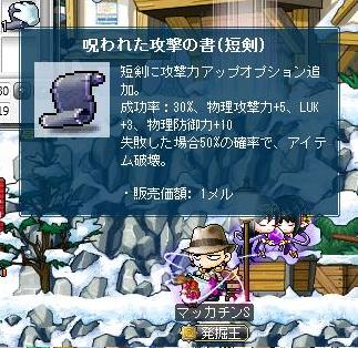 Maple9600a.jpg
