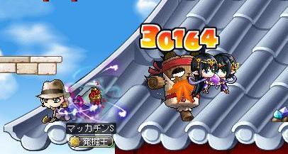 Maple9606a.jpg