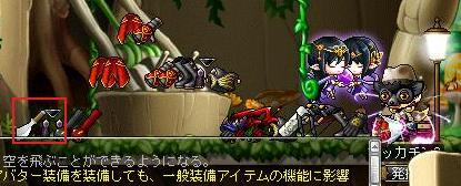 Maple9613a.jpg
