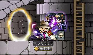 Maple9633a.jpg