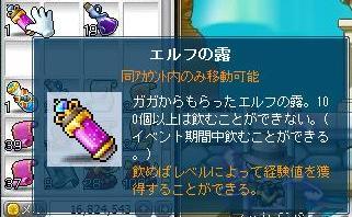 Maple9643a.jpg