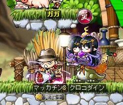 Maple9666a.jpg