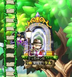 Maple9812a.jpg