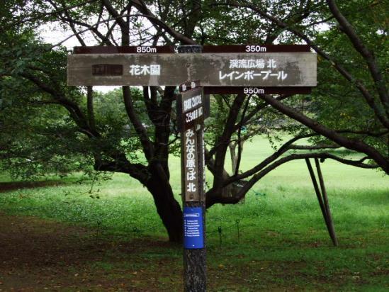 DSCF0156.jpg