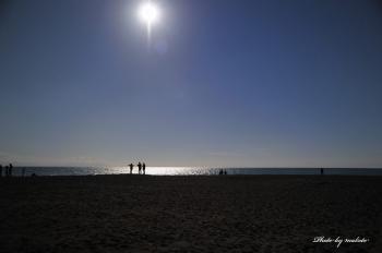 D3S_8995陽の当たる場所m