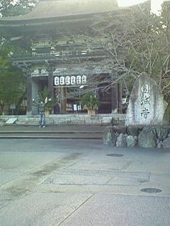 NEC_10073.jpg