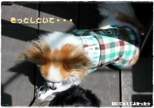 120_20110525211943.jpg