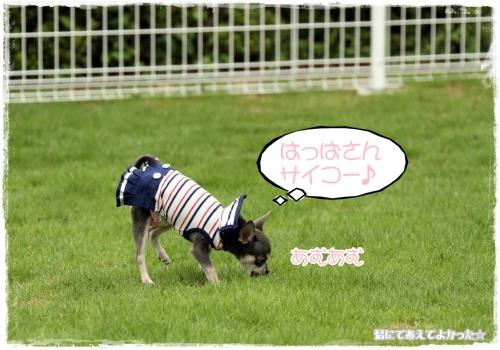 123_20110730193508.jpg