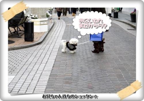615_20110207221625.jpg