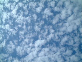 2006_08310024.jpg