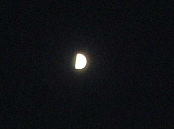 2006_09020022.jpg