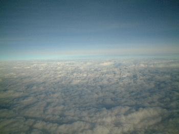 2006_11140210.jpg
