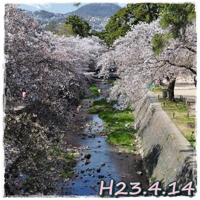 13_20110419001643.jpg
