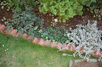 2008.10.26現在の花壇