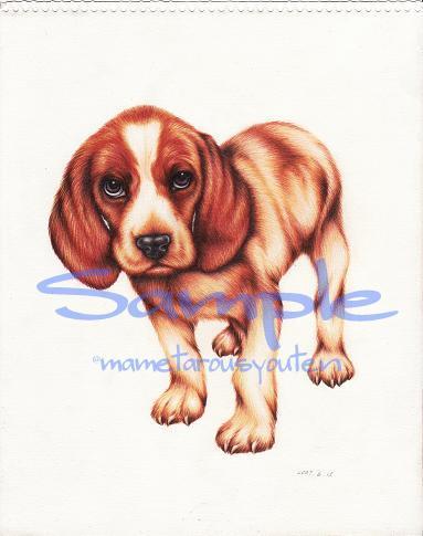 過去の作品sample(beagle)