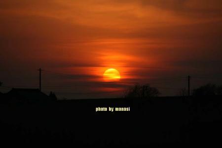 2009年2月7日(6)