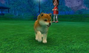 dogs0491.jpg