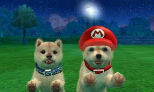 dogs0493.jpg