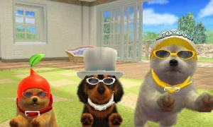 dogs0509.jpg