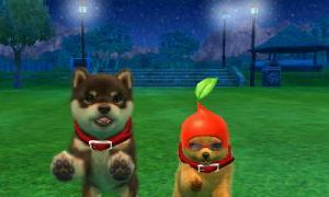 dogs0510.jpg