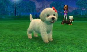 dogs0511.jpg