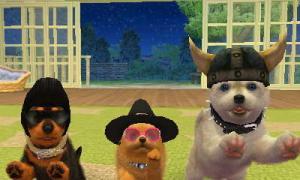 dogs0519.jpg