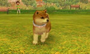 dogs0520.jpg