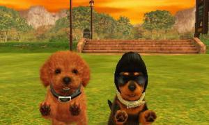 dogs0524.jpg