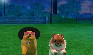 dogs0532.jpg