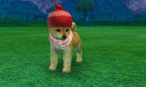 dogs0533.jpg