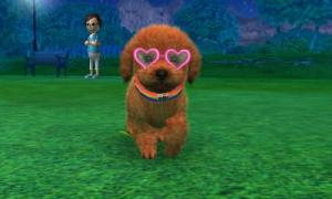 dogs0534.jpg