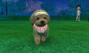 dogs0536.jpg