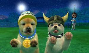 dogs0538.jpg