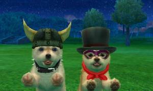 dogs0540.jpg