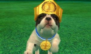 dogs0541.jpg