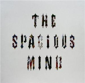 spacious_mind_-f_(Small).jpg