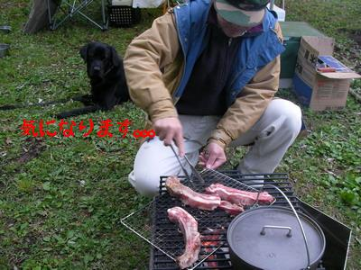 2009-04-25_SANY0023_2.jpg