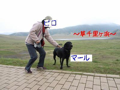 2009-04-26_R0011070_2.jpg