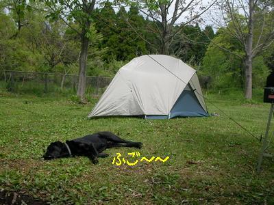 2009-04-26_SANY0036_2.jpg