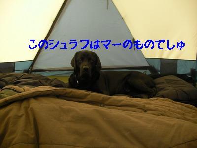 2009-04-26_SANY0041_2.jpg