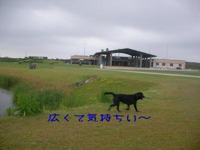 2009-05-04_SANY0007_2.jpg