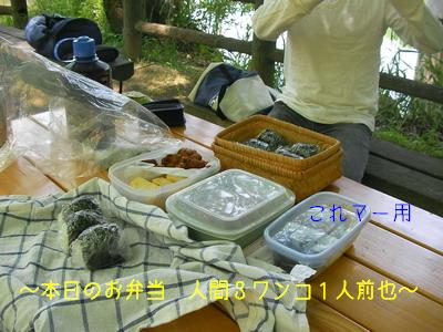 2009-05-09_SANY0032_3.jpg